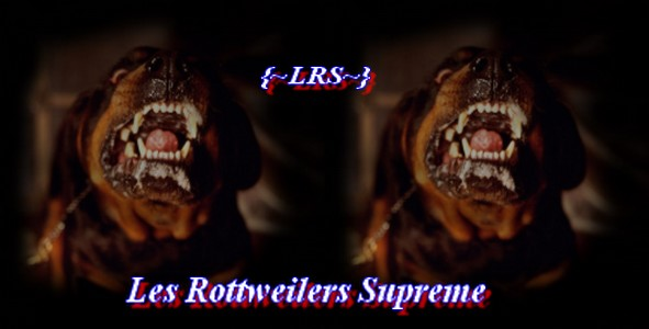 Les Rottweilers supreme