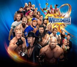 Wrestlemania 33 Prediction League Wrestl10