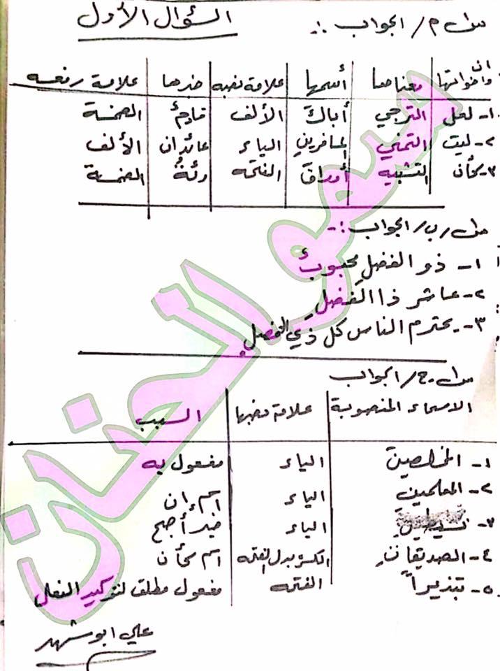 أجوبة الأسئلة الوزارية للغة العربية للسادس الابتدائى 2017 الدور الأول  3113
