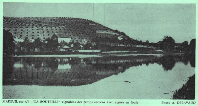 MAREUIL-sur-AY Copie_12
