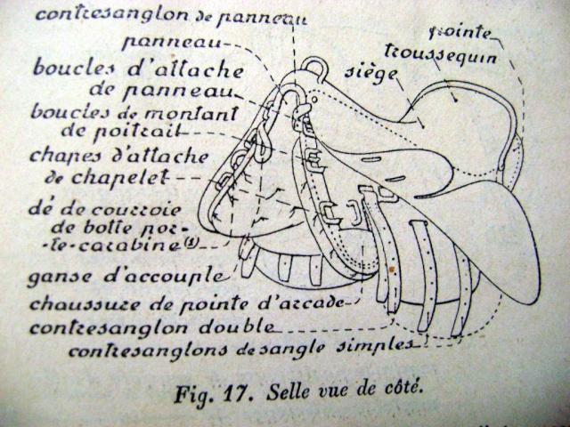 estimation etuis de cavalerie pour mousqueton 92 ???? Selle_17