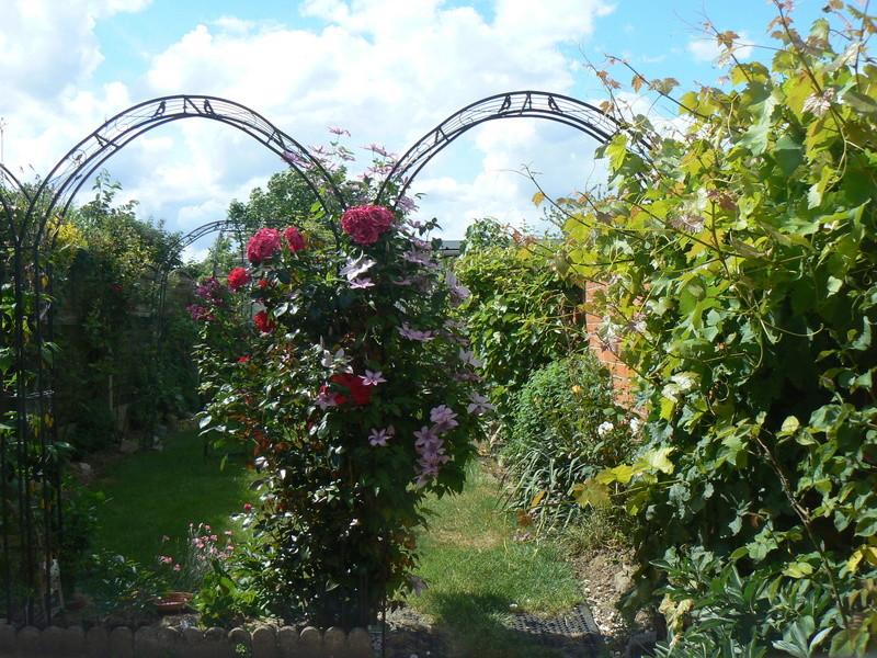 Les Jardins d'Athel Loren. 1mai_310