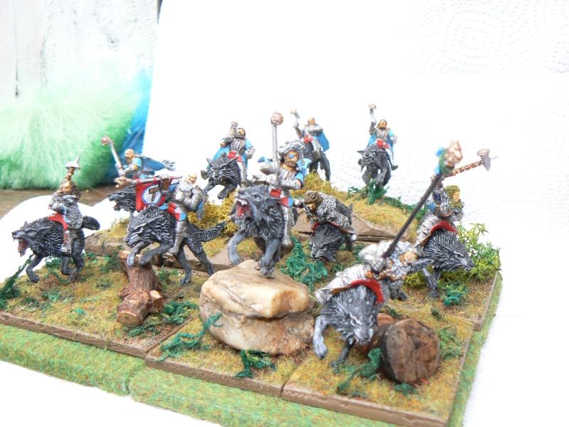 Mon Armée du Culte d'Ulric et du Middeinhem. Loups_16