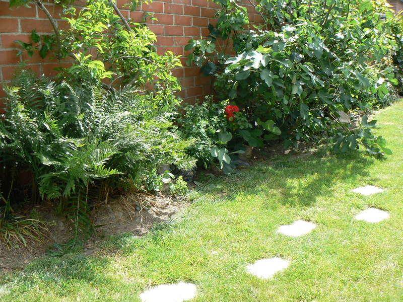 Les Jardins d'Athel Loren. Mai_5110