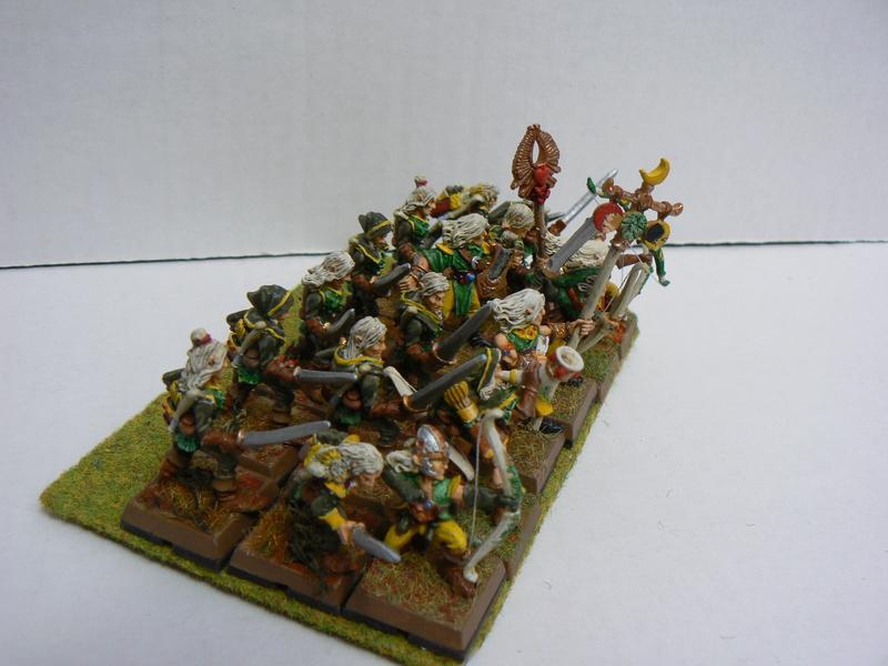 Mon Armée Elfes Sylvains - Page 2 P1140818