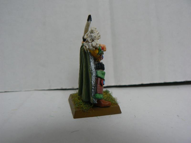 Mon Armée Elfes Sylvains - Page 2 P1140820