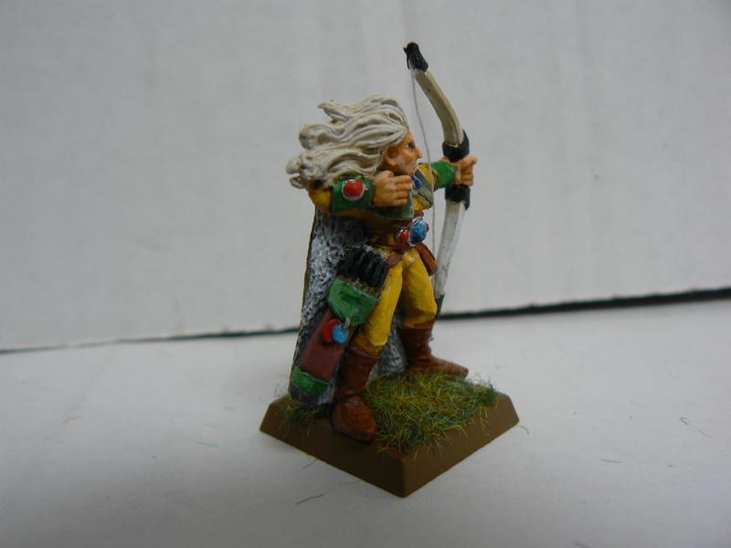 Mon Armée Elfes Sylvains - Page 2 P1140821