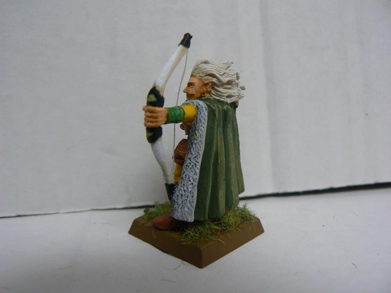 Mon Armée Elfes Sylvains - Page 2 P1140822