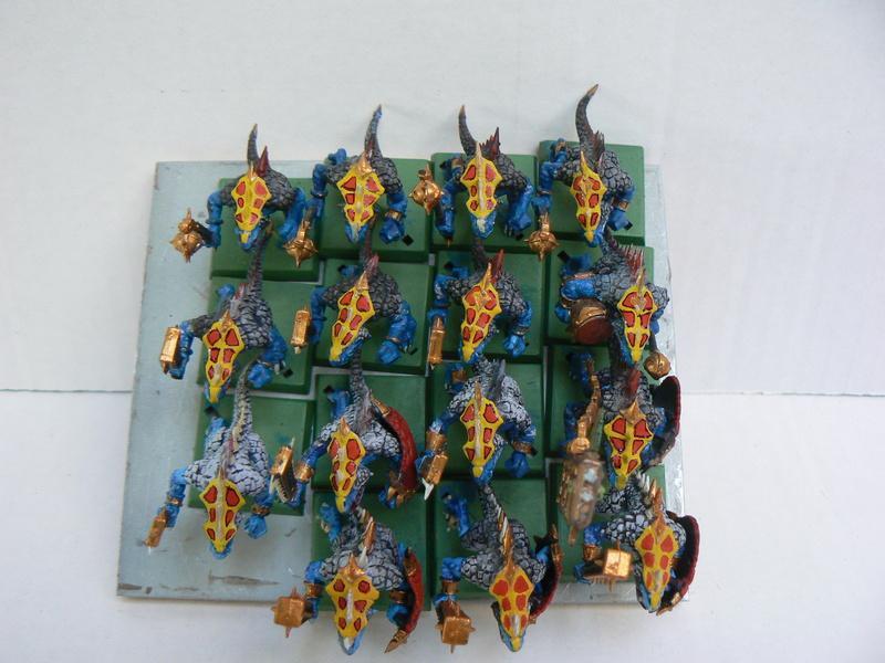 Mon armée de Lustrie P1140932