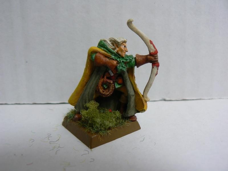 Mon Armée Elfes Sylvains - Page 2 P1150055