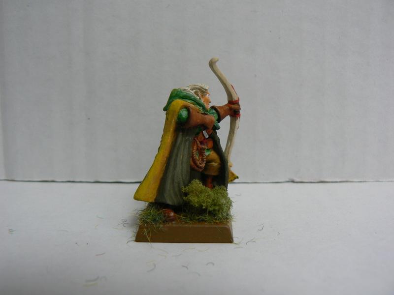 Mon Armée Elfes Sylvains - Page 2 P1150057