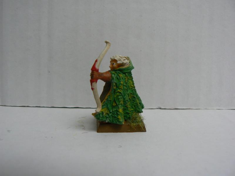 Mon Armée Elfes Sylvains - Page 2 P1150058