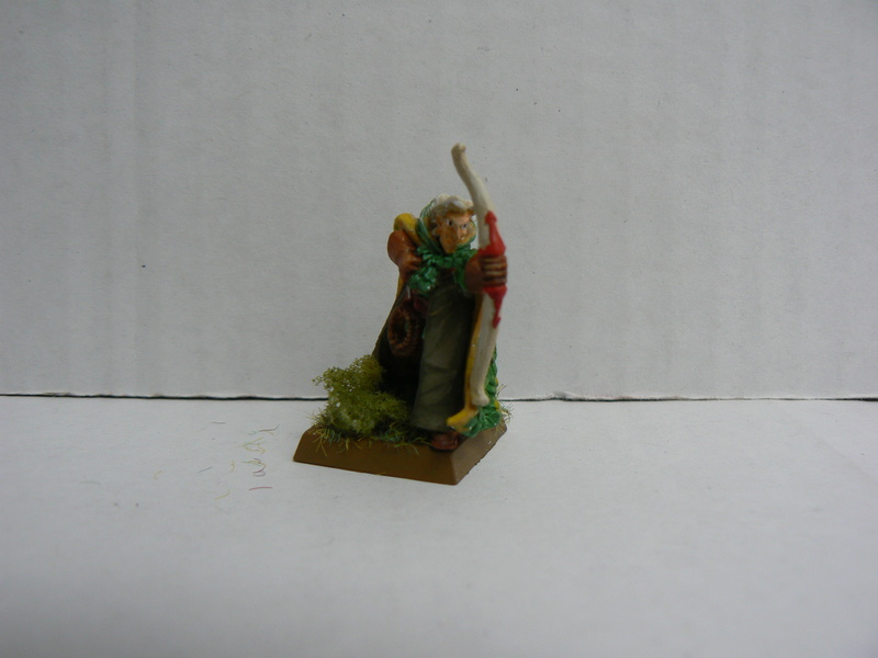 Mon Armée Elfes Sylvains - Page 2 P1150059