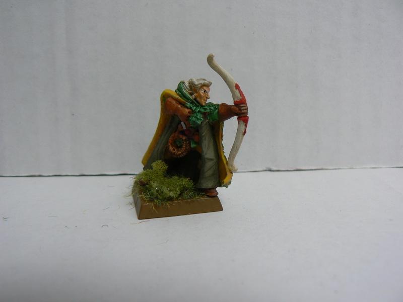 Mon Armée Elfes Sylvains - Page 2 P1150060