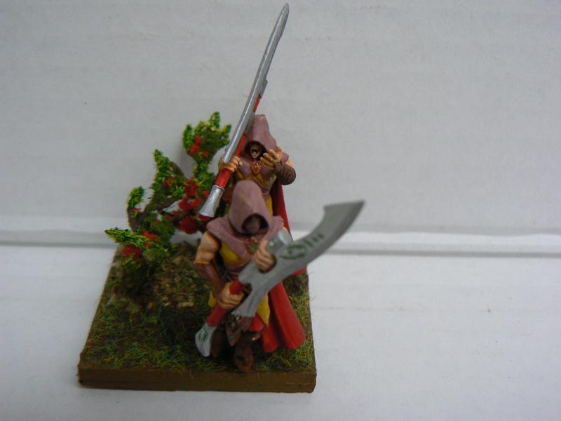 Mon Armée Elfes Sylvains - Page 3 P1150111