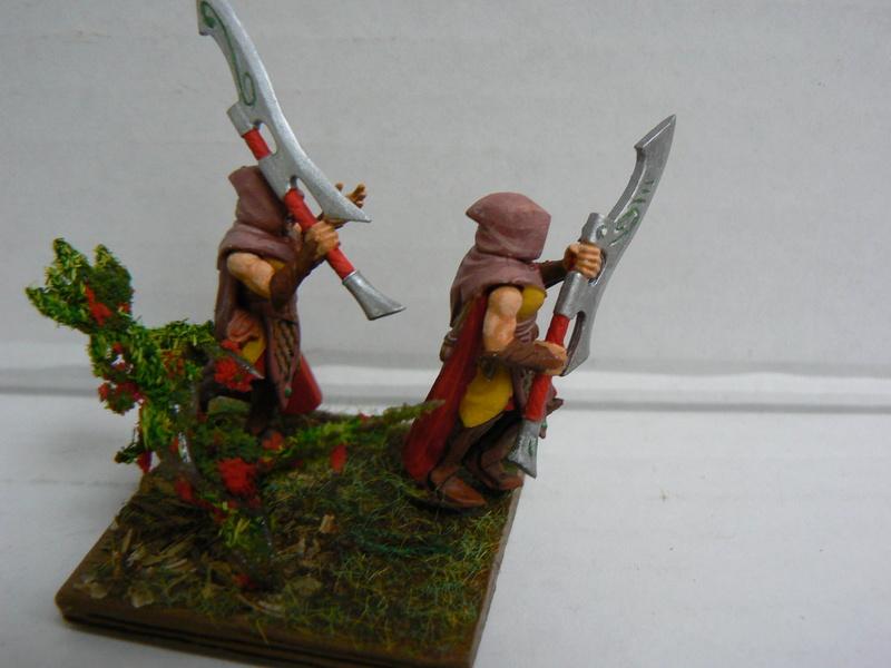Mon Armée Elfes Sylvains - Page 3 P1150112