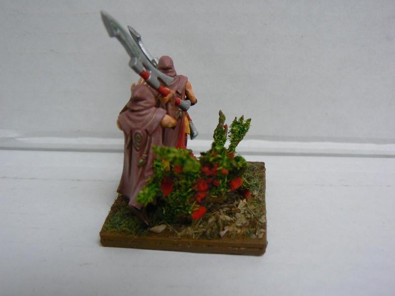 Mon Armée Elfes Sylvains - Page 3 P1150113