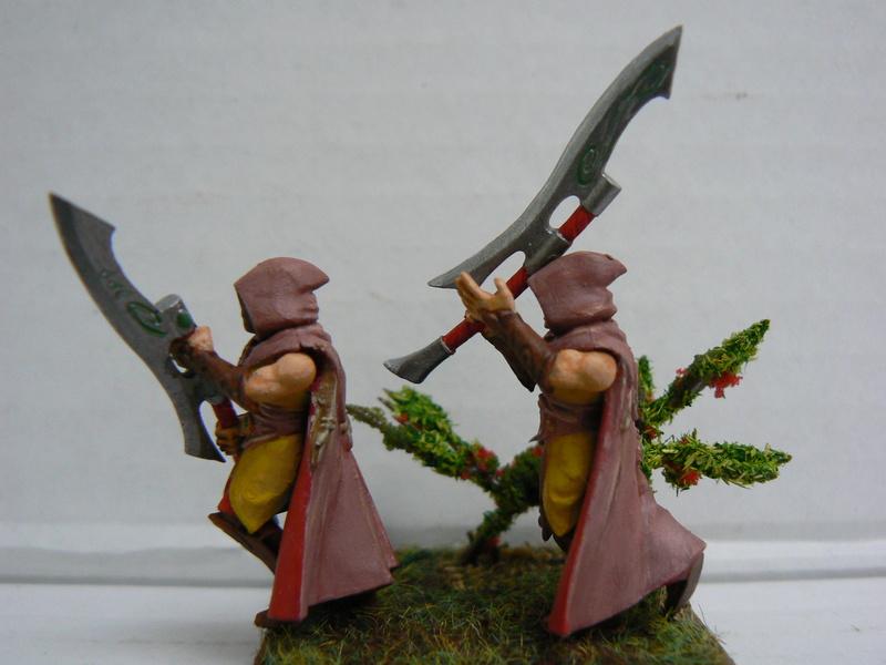 Mon Armée Elfes Sylvains - Page 3 P1150114