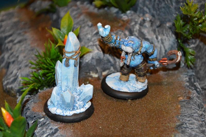 Jeu de role - figurines - artwork et gn - Page 13 Dsc_0311