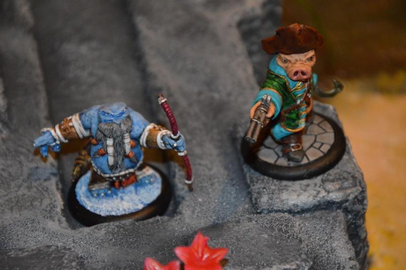 Jeu de role - figurines - artwork et gn - Page 13 Dsc_0315