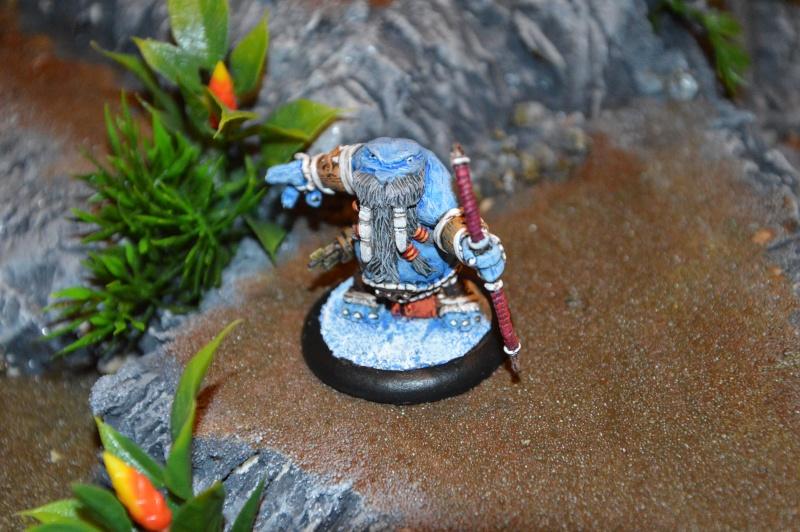 Jeu de role - figurines - artwork et gn - Page 13 Dsc_0316