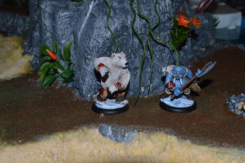 Jeu de role - figurines - artwork et gn - Page 13 Dsc_0328