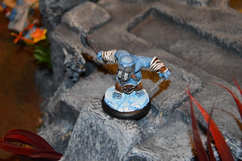 Jeu de role - figurines - artwork et gn - Page 13 Dsc_0329