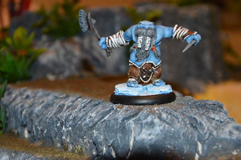 Jeu de role - figurines - artwork et gn - Page 13 Dsc_0330