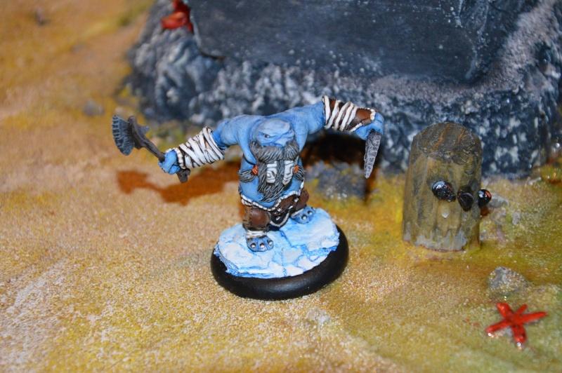 Jeu de role - figurines - artwork et gn - Page 13 Dsc_0331