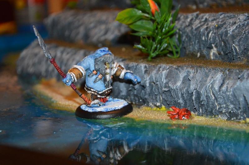 Jeu de role - figurines - artwork et gn - Page 13 Dsc_0332