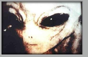 Racat Aliene - Jashtëtokësore Redali10