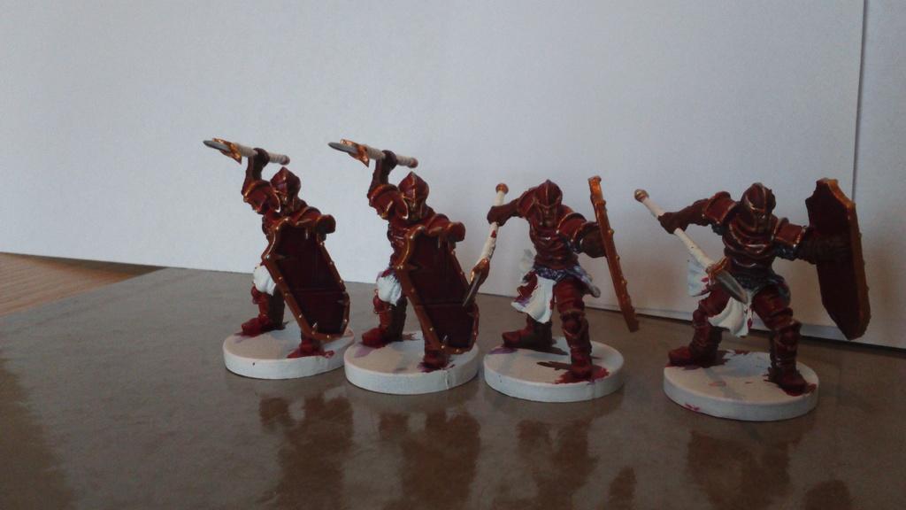 Armée Daquan du Yeti! Dsc_1618