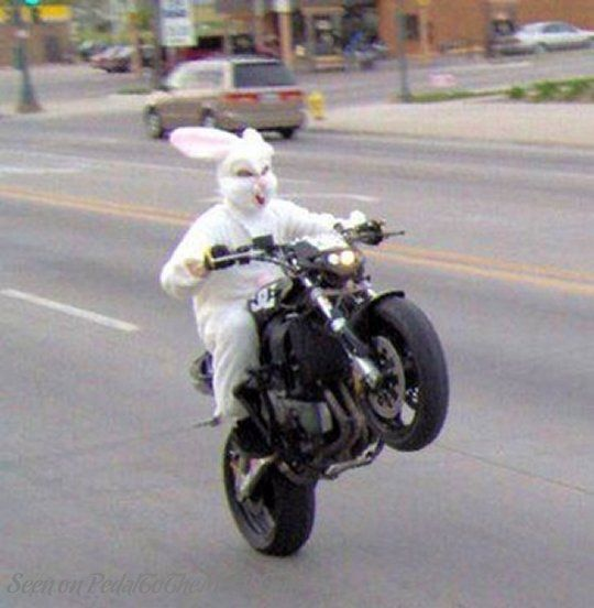 Boa Páscoa!  262f0710