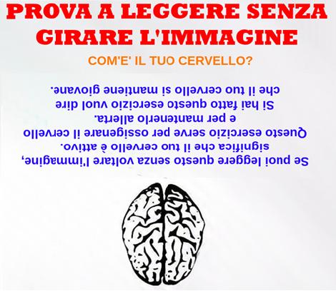 dal mondo........ Cervel10