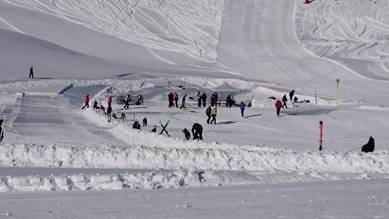 Chiens d'avalanche Dsc_0213