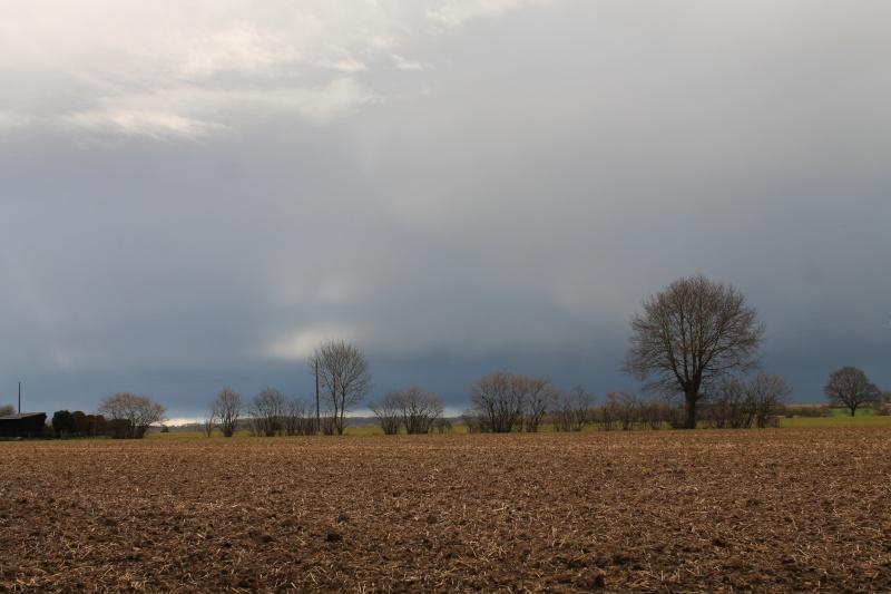 avant la pluie Img_7511