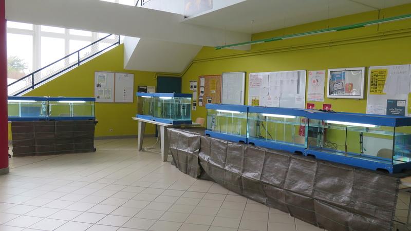 Bourse de Bourcefranc Img_4810
