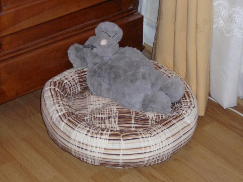 Vos créations/bricolages pour vos chiens (doudous, jouets, laisses, etc...) P1030912