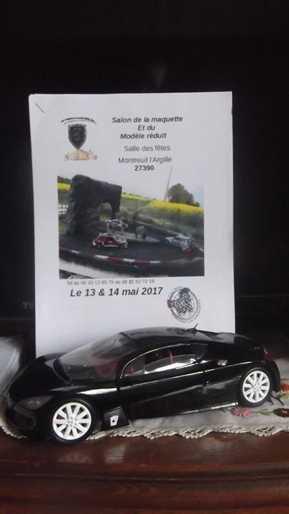 Exposition de Montreuil-L'Argillé (27) 09057d10