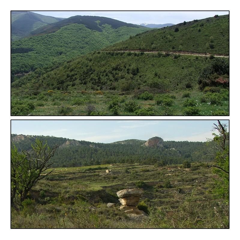 La Rioja - Burgos - Navarre (9-12 mai 2014) Aperau11