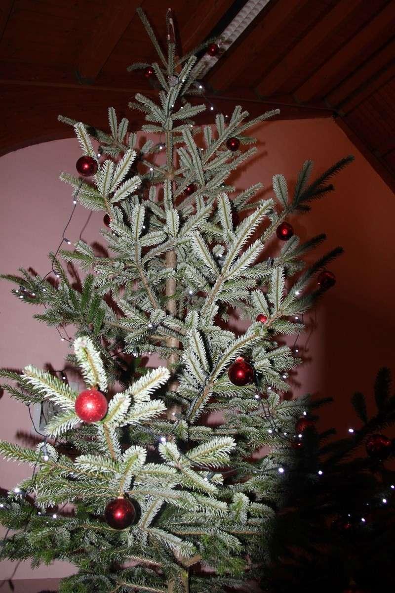 Fête de Noël des écoles de Wangen le 6 décembre 2013 Img_9114