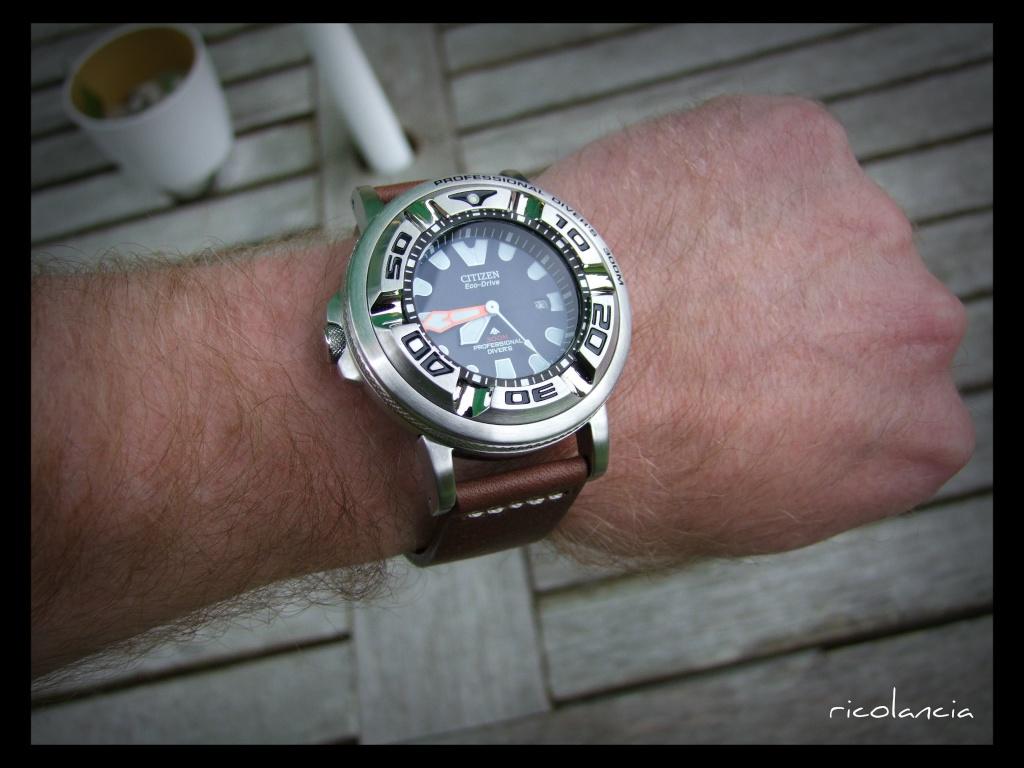 "citizen - citizen BJ-8050 dite ""Ecozilla"" diver's 300m Ecozil33"