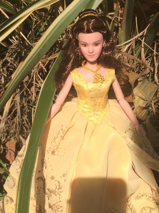 Ma collection des poupées des films de DISNEY - Page 7 Img_0013