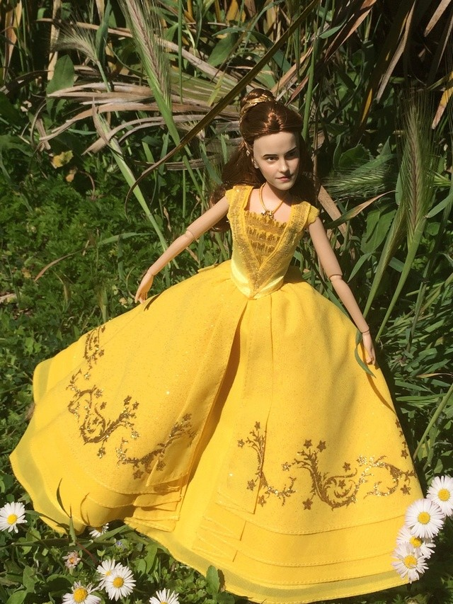 Ma collection des poupées des films de DISNEY - Page 7 Img_1014