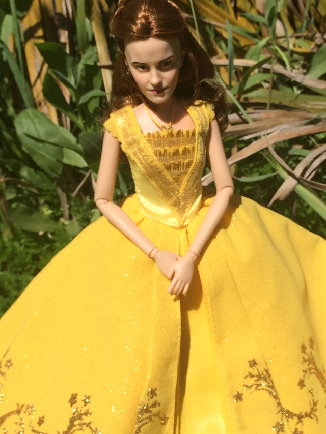 Ma collection des poupées des films de DISNEY - Page 7 Img_1119