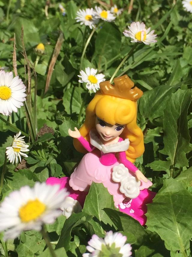 Ma collection des poupées des films de DISNEY - Page 7 Img_1414