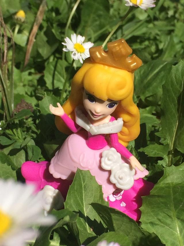 Ma collection des poupées des films de DISNEY - Page 7 Img_1510