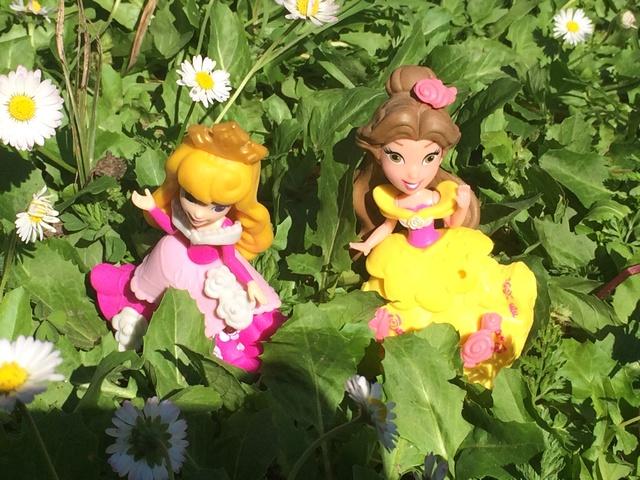 Ma collection des poupées des films de DISNEY - Page 7 Img_1512