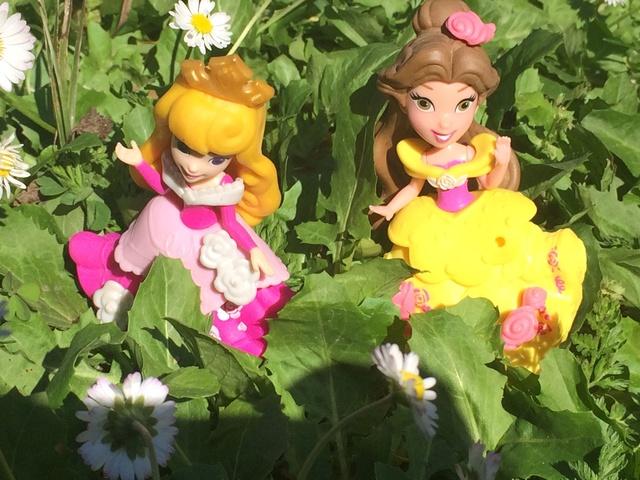 Ma collection des poupées des films de DISNEY - Page 7 Img_1513