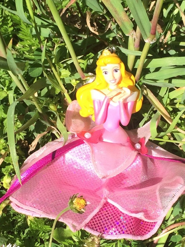 Ma collection des poupées des films de DISNEY - Page 7 Img_1515